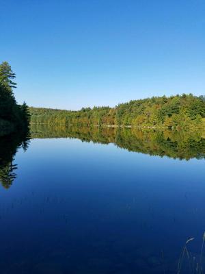 Gilman Pond